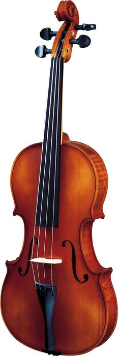 Strunal 260 Series Violin Outfit