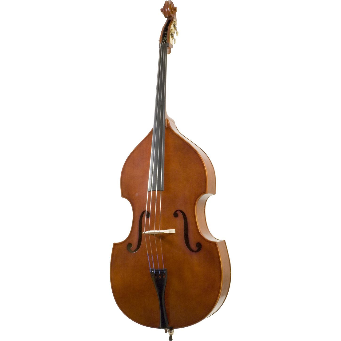 The Double Bass