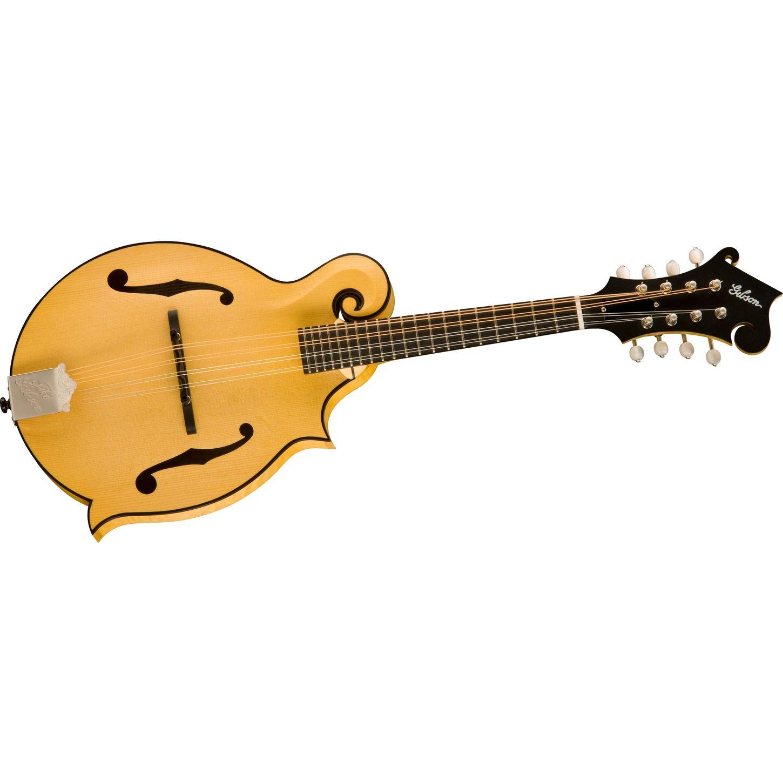 Gibson Jam Master F Style  F Style Mandolin Drawing