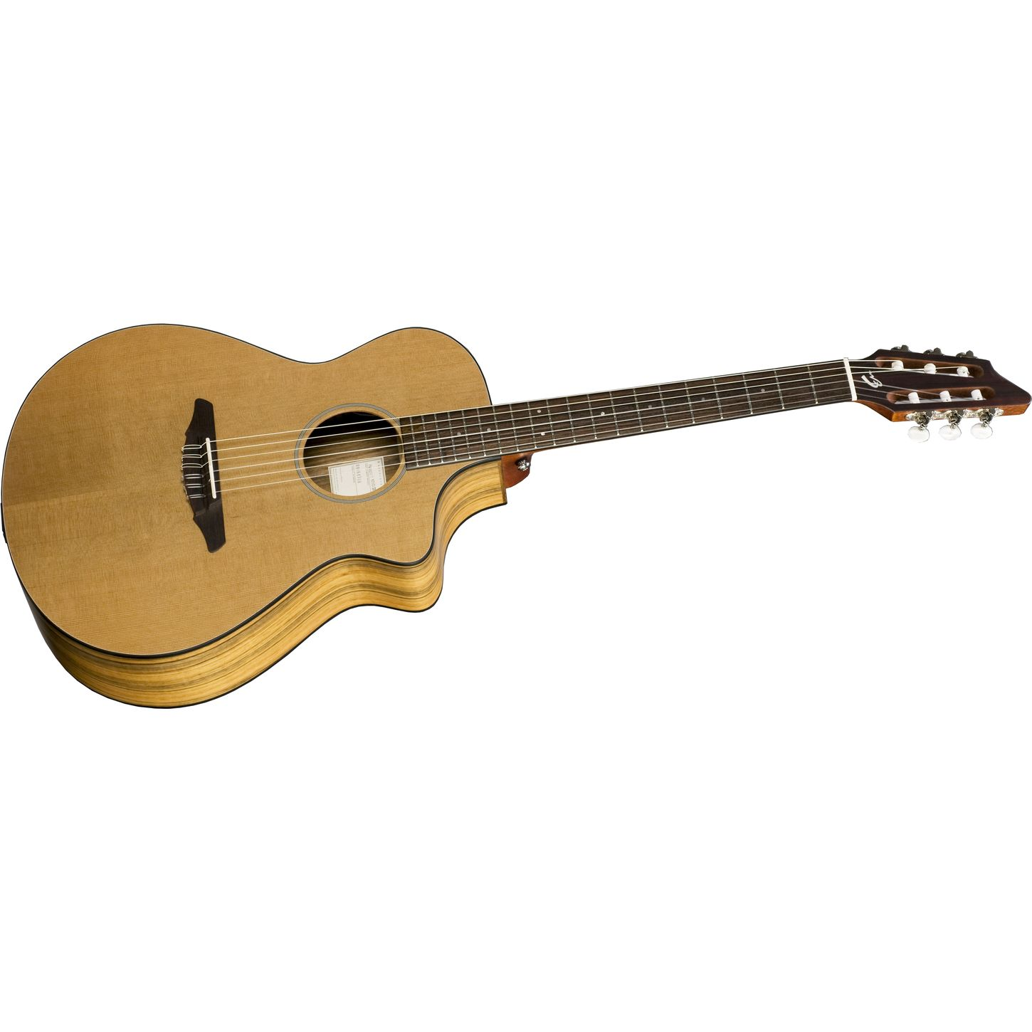 ... N250/COe Nylon String Acoustic-Electric Guitar | Musician's Friend