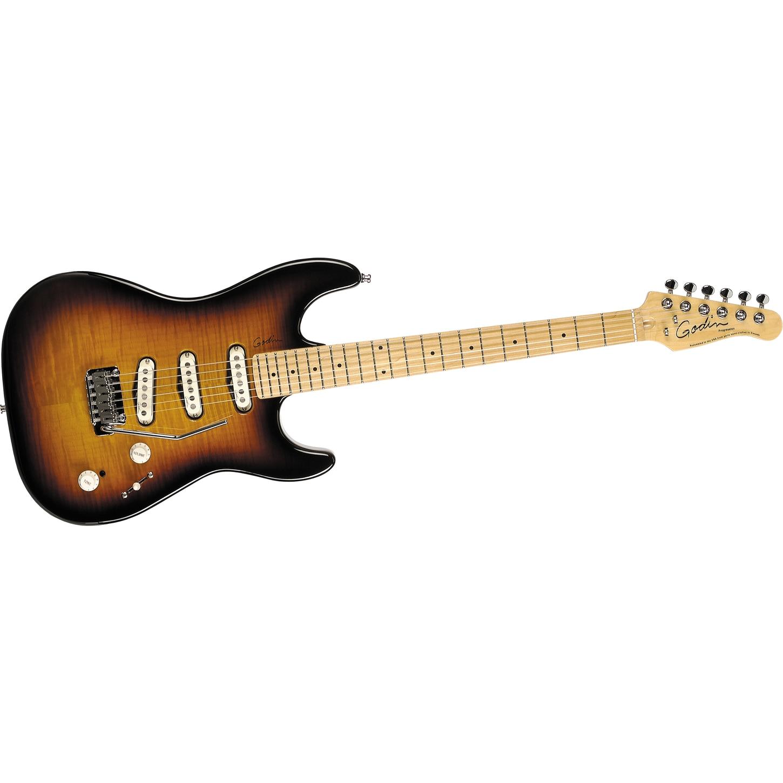 Photos of Electric Guitars Godin