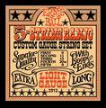 Ernie Ball 2312 Light Gauge 5-String Banjo Strings