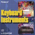 L-CDX-02 Keyboard Instruments