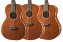 Breedlove Frontier Series Acoustic Guitars
