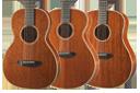 Breedlove Frontier Series Acoustic Guitars