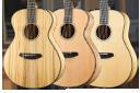 Breedlove Oregon Series Acoustic Guitars