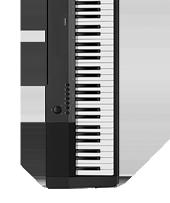 Casio CDP-120