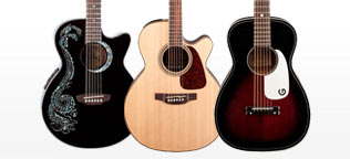 Shop Popular Acoustic Guitar Body Styles