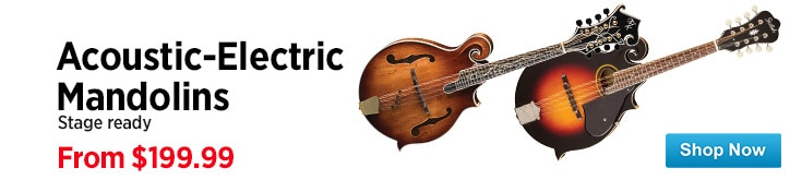 MF MD DT Acoustic Electric Mandolins 03-27-15