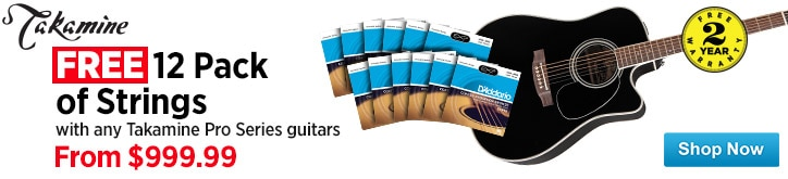 MF MD DT Free 12 Pack Of Stringsa 1340 Value with any Takamine Pro Series Guitar 10-17-14