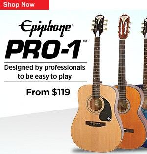 Epiphone Pro1 Series