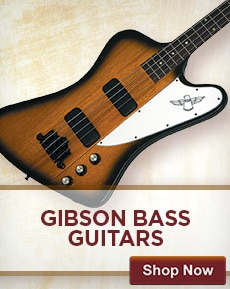 Gibson Accessories and Parts