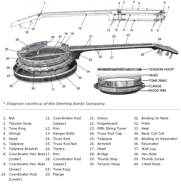 Banjo Parts and Construction