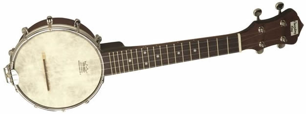 How To Choose a Banjo - The Hub
