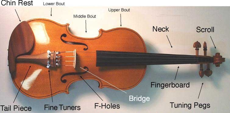 Image result for How to Spot a Quality Violin